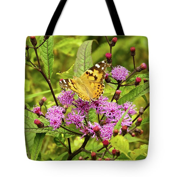 American Painted Lady Butterfly Tote Bag