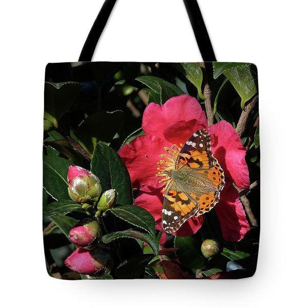 American Painted Lady On Camelia Tote Bag