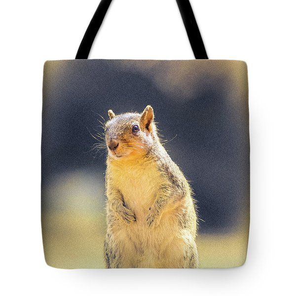 American Red Squirrel Tote Bag