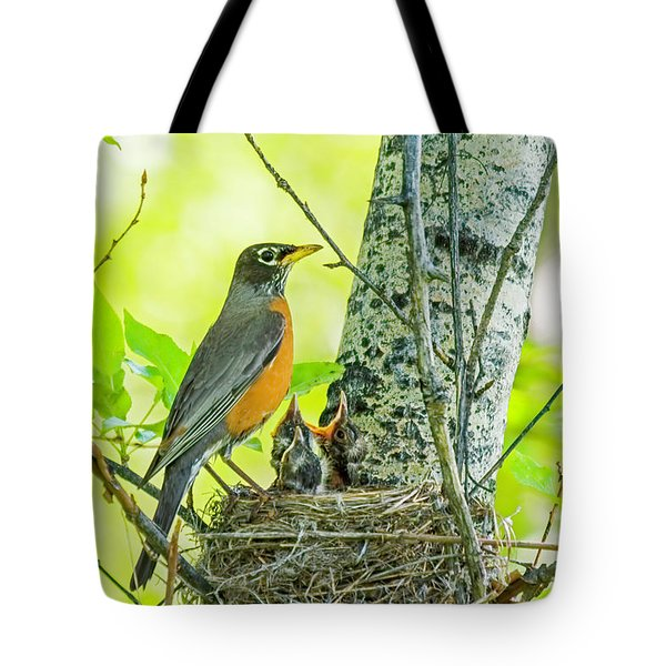 American Robin Feeding Chicks Tote Bag