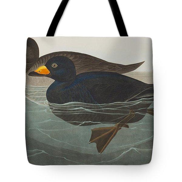 American Scoter Duck Tote Bag by John James Audubon