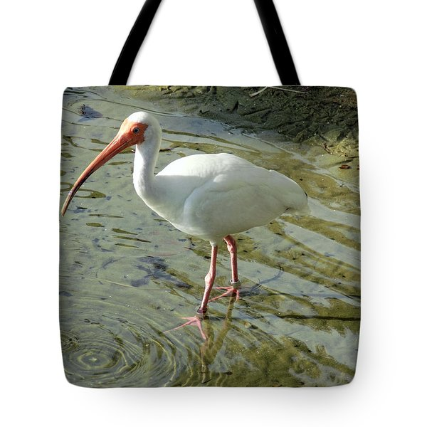 American White Ibis Tote Bag