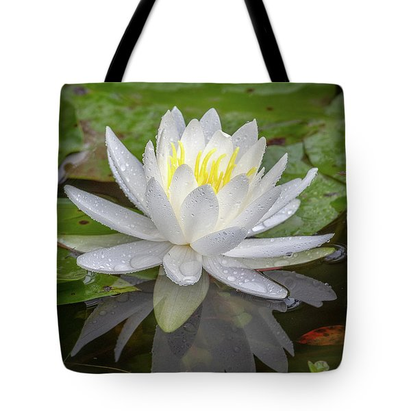 American White Water Lily Tote Bag