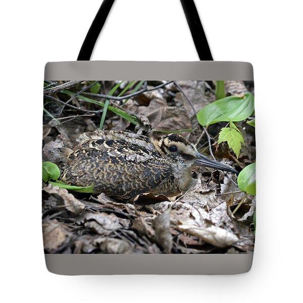 American Woodcock Chick. Tote Bag