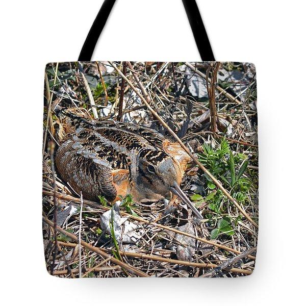 American Woodcock Incubating Her Chicks Tote Bag
