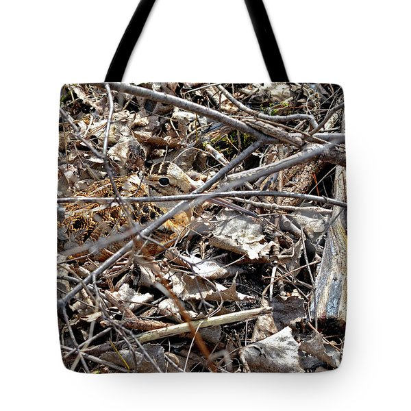 American Woodcock, Migratory Bird Tote Bag