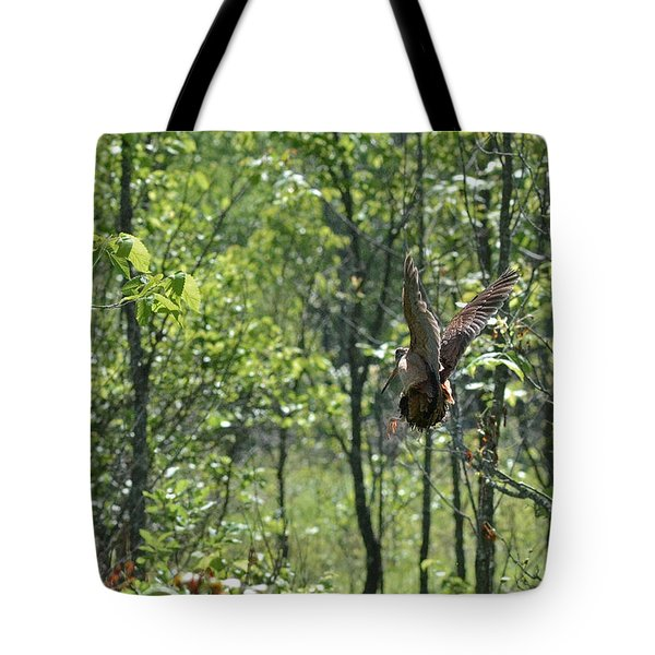 American Woodcock's Flight When She Has Chicks Tote Bag