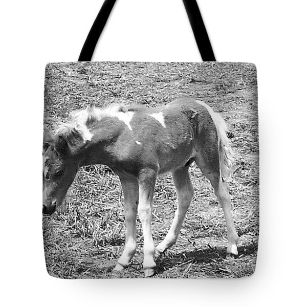 Amish Colt Tote Bag by Eric  Schiabor