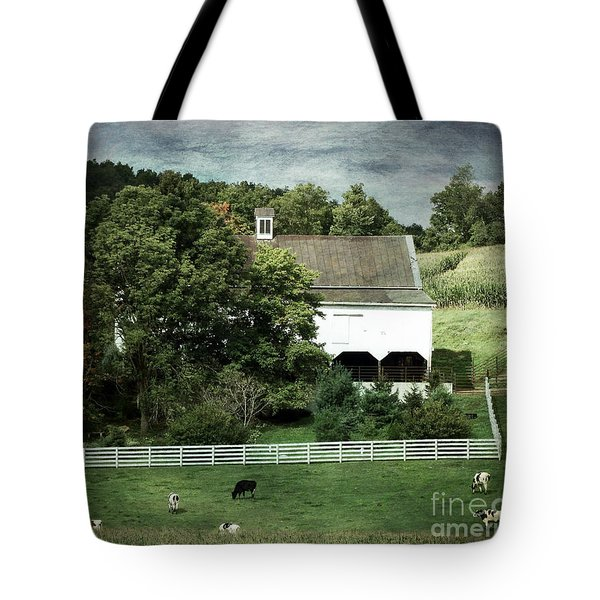 Amish Farm In The Fall With Textures Tote Bag