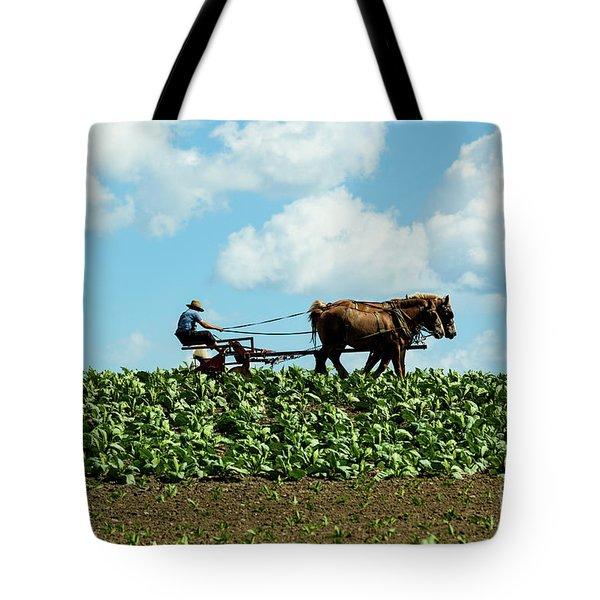 Amish Farmer With Horses In Tobacco Field Tote Bag