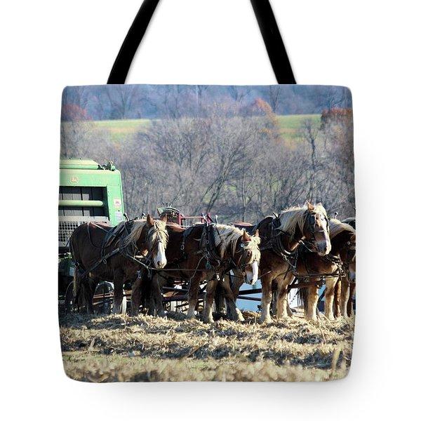 Amish Haymaker In Lancaster County, Pennsylvania Tote Bag