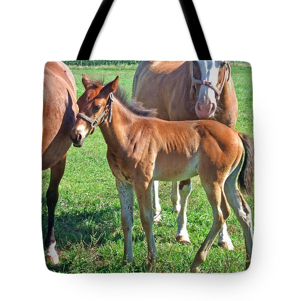 Amish Pony Tote Bag