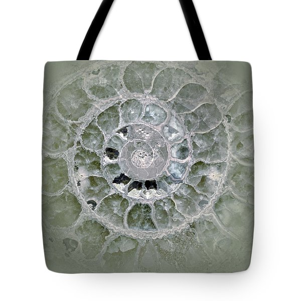 Ammonite Blue Green Tote Bag