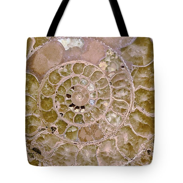 Tote Bag featuring the photograph Ammonite by Gigi Ebert