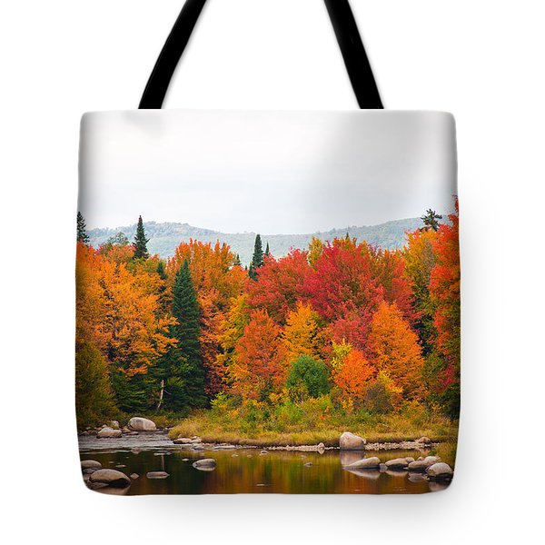 Tote Bag featuring the photograph Ammonoosuc River by Robert Clifford