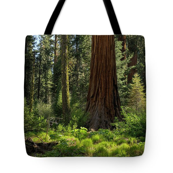 Among Giants Tote Bag by Sue Cullumber