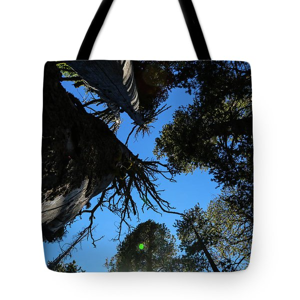 Tote Bag featuring the photograph Among Giants by T A Davies