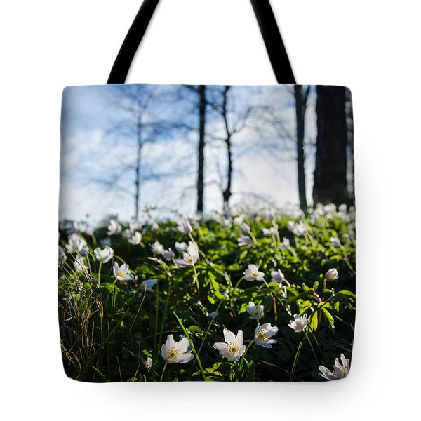 Tote Bag featuring the photograph Among Windflowers On The Ground by Kennerth and Birgitta Kullman