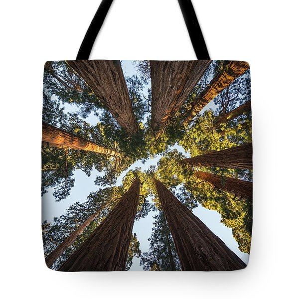 Amongst The Giant Sequoias Tote Bag