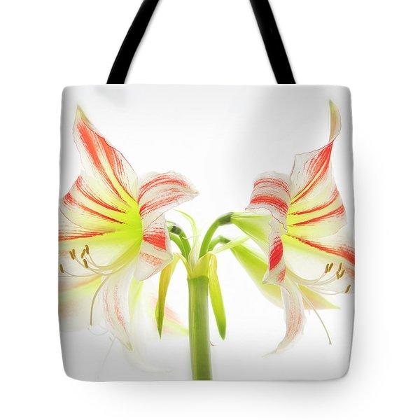 Amorice Tote Bag
