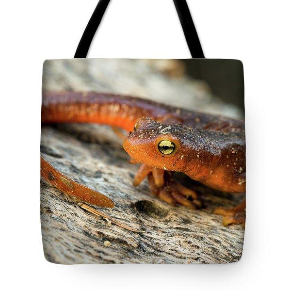 Amphibious Tote Bag