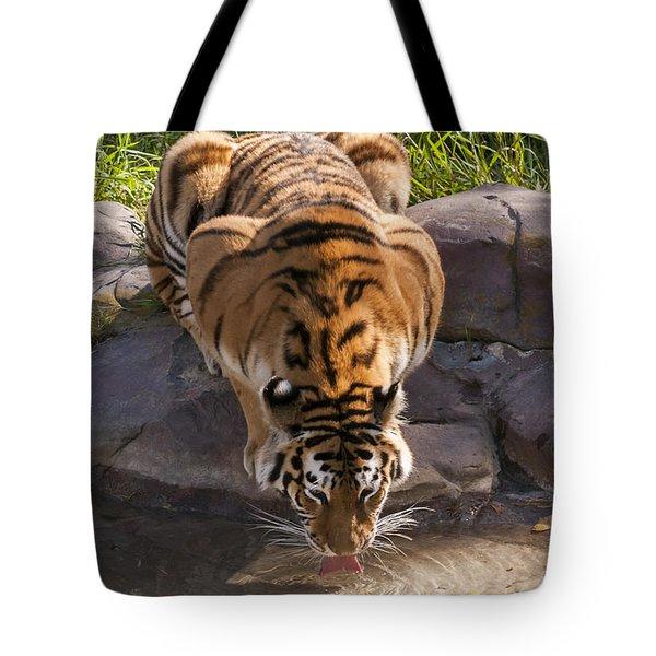 Amur Tiger Drinking Tote Bag
