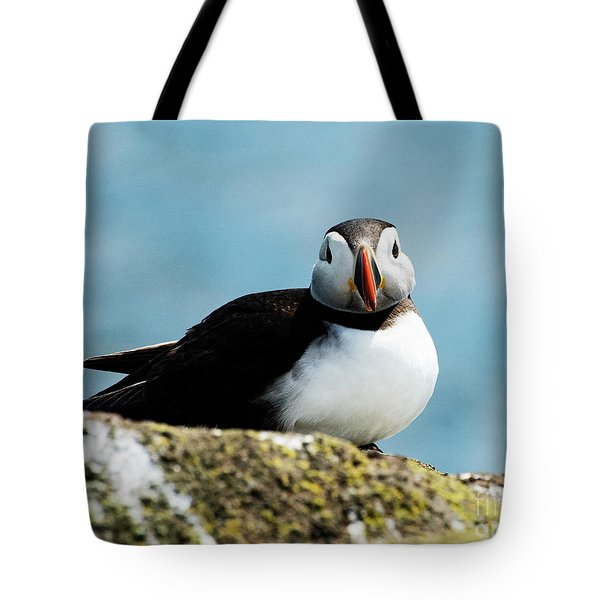 An Atlantic Puffin Tote Bag