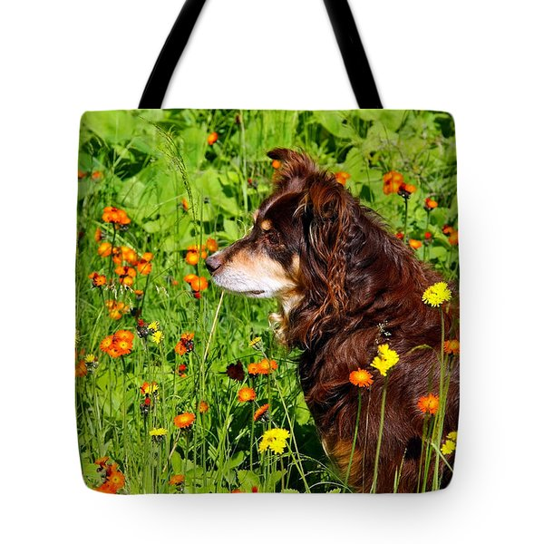 Tote Bag featuring the photograph An Aussie's Thoughtful Moment by Debbie Oppermann