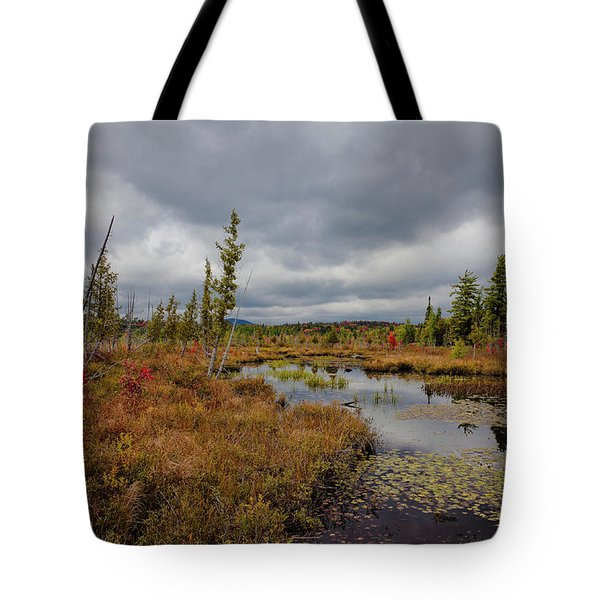 Tote Bag featuring the photograph An Autumn Afternoon On Raquette Lake by David Patterson