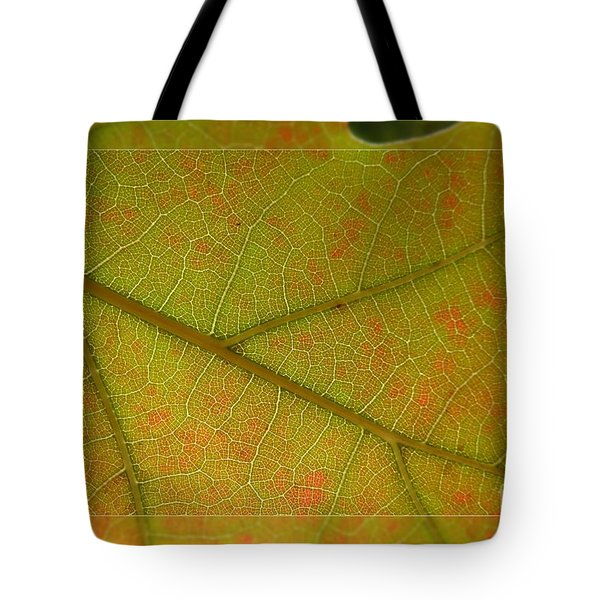 Tote Bag featuring the photograph An Autumn Leaf by Jean Bernard Roussilhe