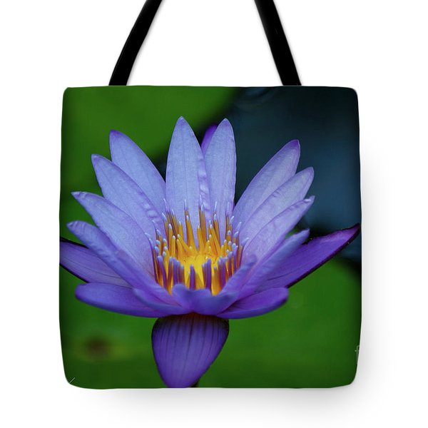 An Awakening Tote Bag