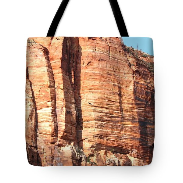 An Eagle Soars Tote Bag by Will Borden