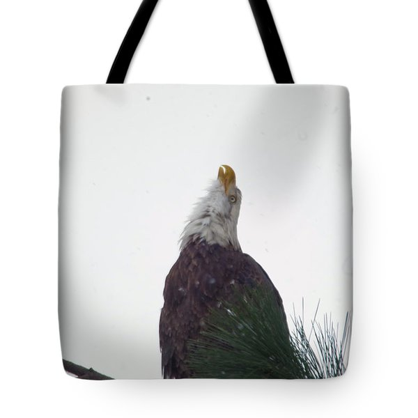 An Eagle Song Tote Bag
