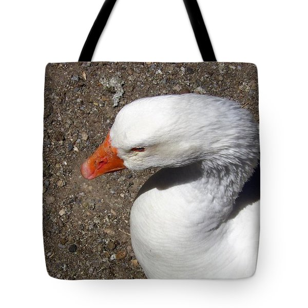 An Ely Moment Tote Bag