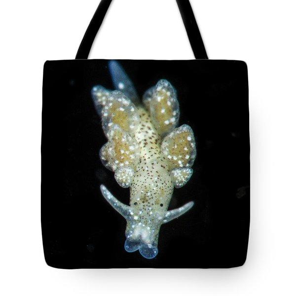 An Ercelania Fuscata Tote Bag