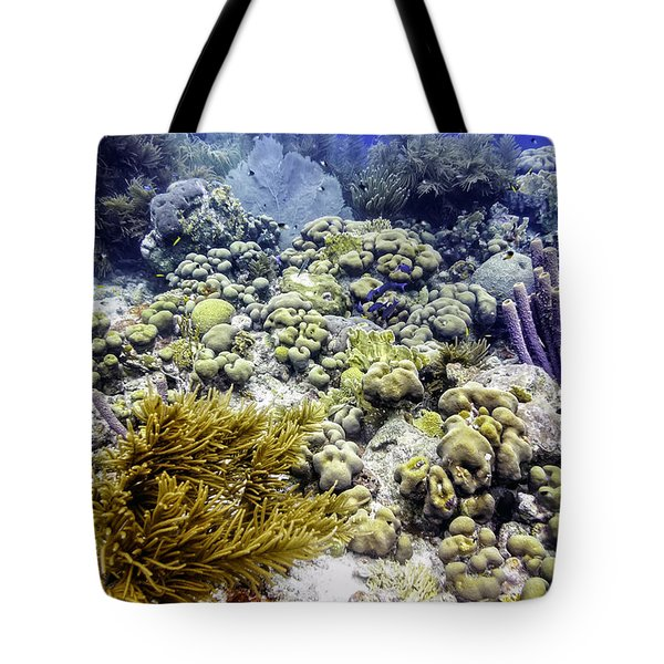 An Explosion Of Life II Tote Bag by Perla Copernik