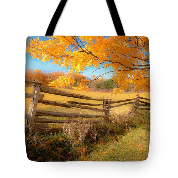 An Ideal Autumn Tote Bag