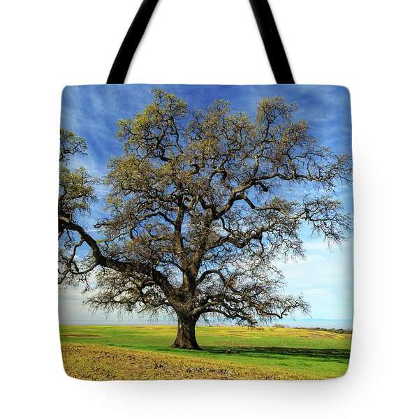 Tote Bag featuring the photograph An Oak In Spring by James Eddy