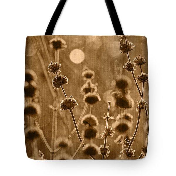 An October Morning Tint Tote Bag