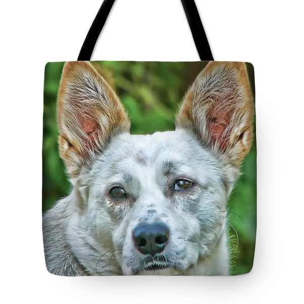 Tote Bag featuring the photograph An Olde Soul by Rhonda McDougall