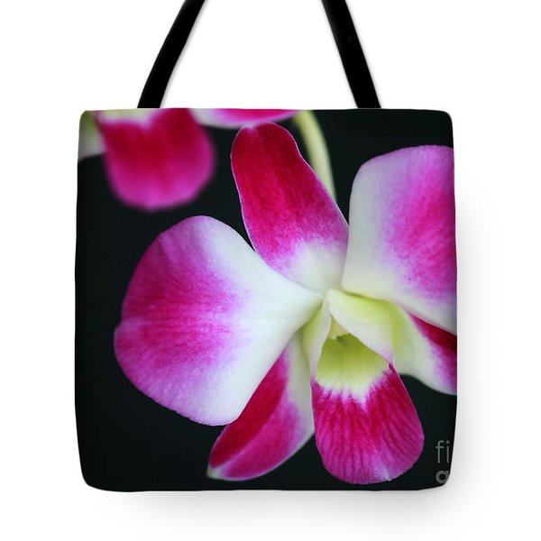 An Orchid Tote Bag by Sabrina L Ryan