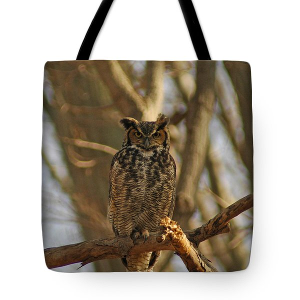 An Owl Tote Bag by Raymond Salani III