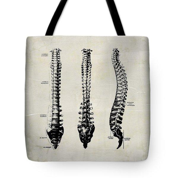 Anatomical Spine Medical Art Tote Bag