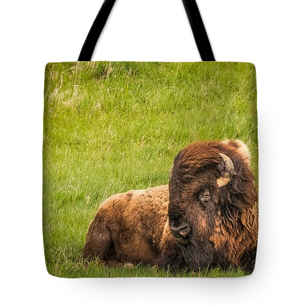 Tote Bag featuring the photograph Ancient Bison by Rikk Flohr