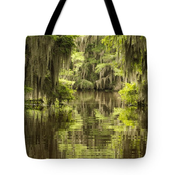 Ancient Cypress Tote Bag