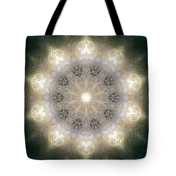 Ancient Light X Tote Bag by Lisa Lipsett