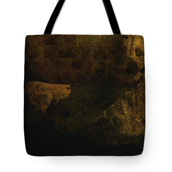 Ancient Lion In Cyprus Tote Bag by Jim Vance