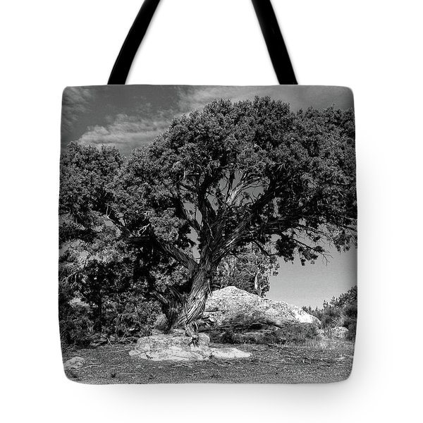 Ancient One Tote Bag