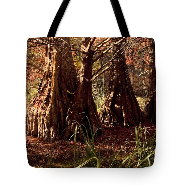 Tote Bag featuring the photograph Ancient Tree At Lake Murray by Tamyra Ayles