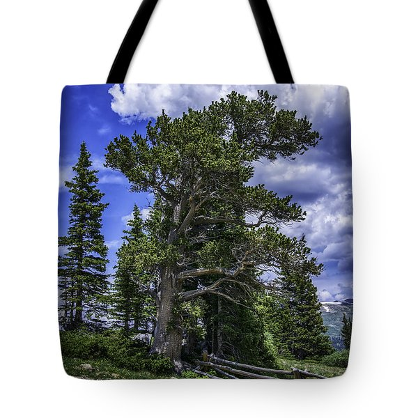 Ancient Winds Tote Bag
